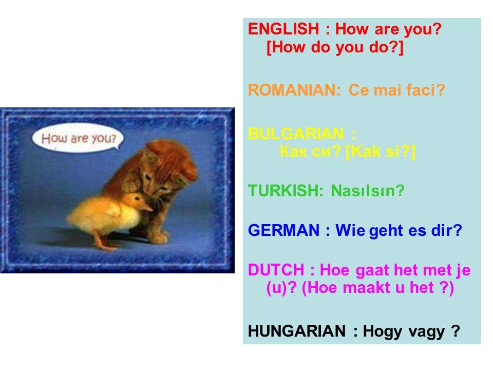 ENGLISH : How are you [How do you do ]